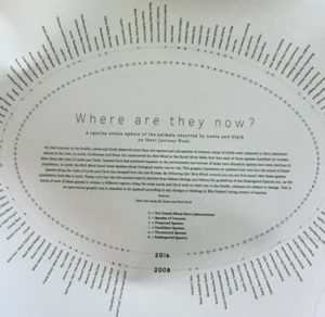 Creative Circle_Marjorie S_Species Poster