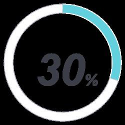 30 percent no italics
